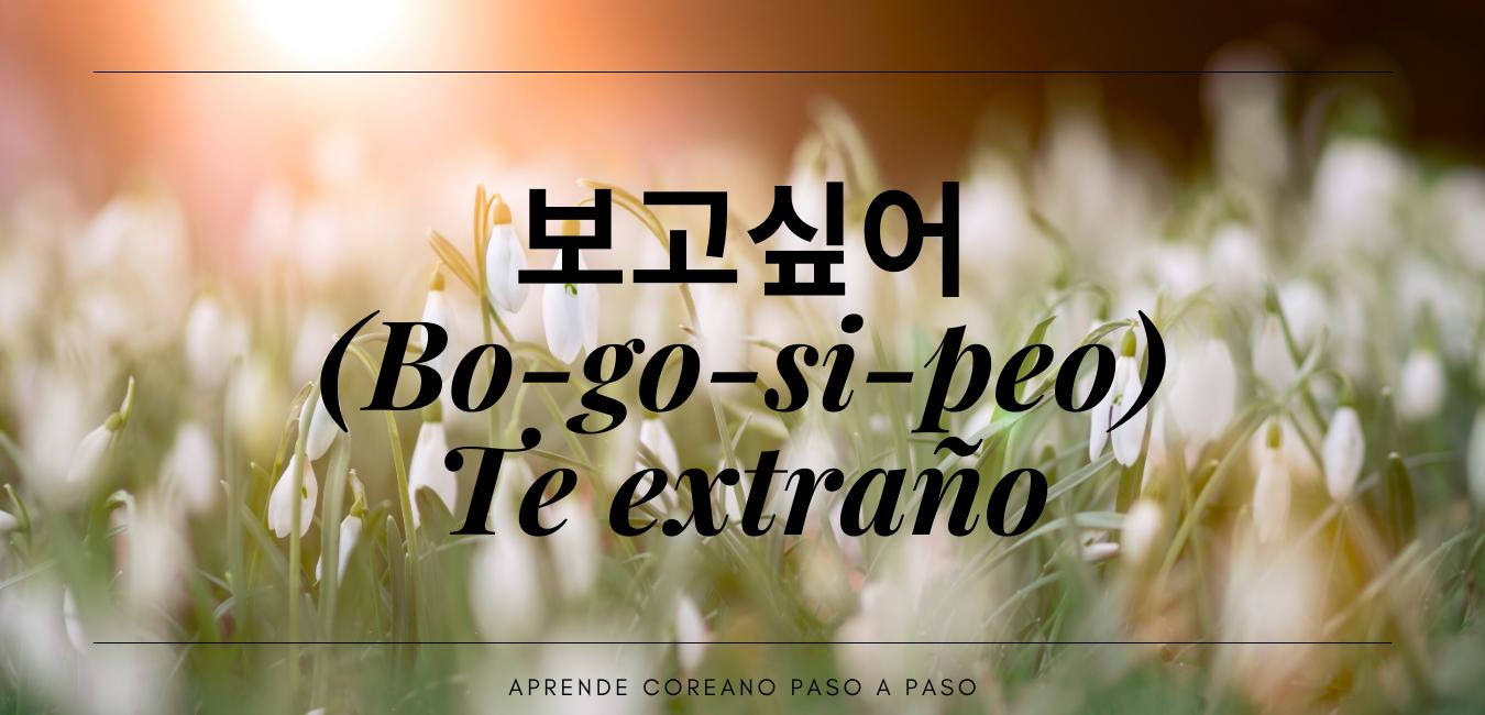 Te extraño coreano y español