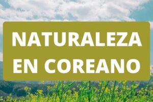 Naturaleza y medio ambiente en coreano